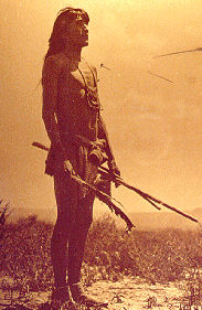 Young Shoshone brave, 1890